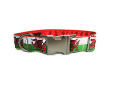 Clip dog collar 1 inch metal clip. Side release. Welsh Dragon