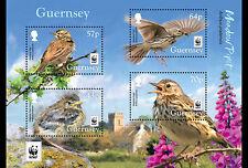 Guernsey 2017 Vogels    WNF  WWF  blok-m/s      postfris/mnh