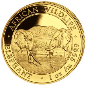 Somalia 1.000 SH. 2020 - Elefant - African Wildlife - Anlagemünze - 1 Oz Gold ST