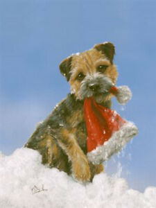 Border Terrier Dog, Christmas cards pack of 10 by Paul Doyle. C585X