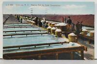 NY Syracuse Making Salt by Solar Evaporation 1908 Postcard D15