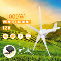 1000W Wind Turbine Horizontal Generator New Energy 5 Blades Controller DC 12V