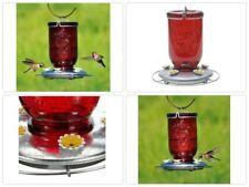 Glass Hummingbird Feeder 32oz Red Mason Jar Feeding Outdoor Yard Pet Bird Lovers