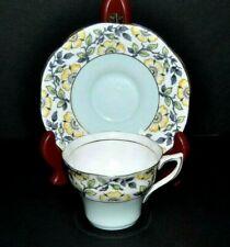 Beautiful Vintage Circa 1948 Rosina, Fine Bone China Teacup & Saucer
