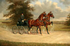 Wall art Pulling a carriage Oil painting Giclee Art HD Printed on canvas L3233