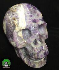 """Huge 5.4"""" DREAM AMETHYST Carved Crystal Skull Super Realistic 4.2LB/1.92kg"""