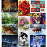 5D DIY Diamond Painting Flower Peacock Embroidery Cross Stitch Home Art Crafts