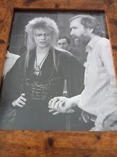 Framed Original Print Jim henson Labyrinth loot crate DX Porters #7 david bowie