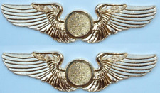 Special Order TWO (2) Shiny Golden Finish Deluxe Private Pilot Wings