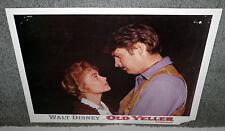 Old Yeller original Disney 11x14 lobby card poster Fess Parker/Dorothy Mcguire