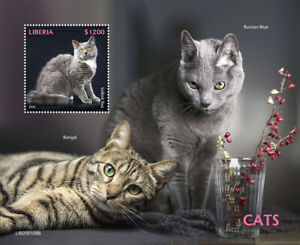 Liberia Cats Stamps 2020 MNH Selkirk Rex Bengal Russian Blue Cat 1v S/S