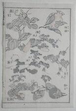 Hokusai manga: Plantas & Frutas: Original de la impresión xilografía japonesa (xilografía)