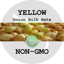 Yellow Onion Sets (Bulbs) - Non-Gmo - Heirloom Garden Plant Start Seed Spring