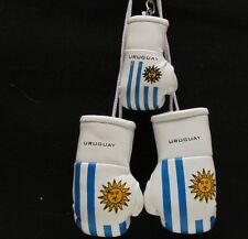 MINI BOXING GLOVES  FLAG OF URUGUAY PLUS KEY RING  - HANG IN CAR