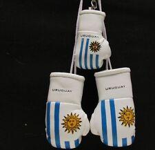 MINI Guantoni da boxe bandiera dell'Uruguay PLUS Portachiavi-hang In Auto