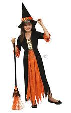Halloween Fancy Dress ~ Girls Gothic Witch Age 3-10