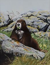 "Arnie Fisk Painting Marmot Mountains Acrylic Canadian Listed Wildlife Art 19x15"""