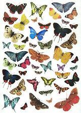 Rice Paper for Decoupage, Scrapbook Sheet, Craft Butterfly World