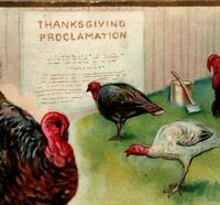 c1908 Antique Tuck Thanksgiving Postcard Thanksgiving Day Series #123 A25