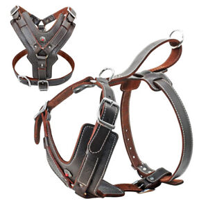 No Pull Heavy Duty Leather Dog Harness Extra Large for Staffie Bulldog Pit Bull
