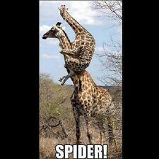 "Funny  Giraffe  refrigerator magnet 2 1/2 x 3  1/2 """