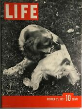 ~Vintage Life Magazine~October 25Th, 1937~Hunting Spaniel Cover~Ships Free~