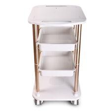 Hot Beauty Salon Trolley Pedestal Rolling Cart Two Shelf ABS Aluminum Holder Spa