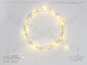 LED Flexible Wire Light Chain, 40 Warm White LEDs, Silver or Copper, Ind/Outd