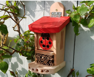 Ladybird Lodge Ideal ideal shelter ladybirds, mason, leafcutter bees