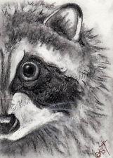 mask Raccoon aceo EBSQ Kim Loberg wildlife Mini Art wild Animal Charcoal drawing