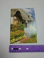 Gem Stone Can Stock Photo Blank Note Card English Cottage Garden Unused