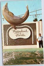 Lily Champagne Marineland, Florida dolphin porpoise flip
