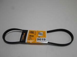Cinturón Poly-V-Ribbed Cinturones CONTITECH Ford Mondeo 1 2 Serie 6842244