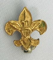 Small 1/2″ Small Boy Scouts of America Eagle Scout BSA Award Project  Pin Gold