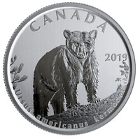 Canada 50 cents coin, Wildlife Treasury & Fauna, Kermode Bear, UNC, 2019