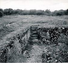ALESIA c. 1960 - Village Gaulois Côte d'Or - DIV 3582