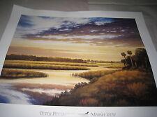 Print Marsh View Peter Pettegrew The Conservancy SW FL 2001 Seven North Inc22/28