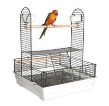 Liberta Harrington II Table Top Bird Parrot Playstand - Large