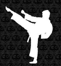 MARTIAL ARTS STICKER DECAL 140mm Wide  Taekwondo Hapkido Judo Jujutsu Karate.