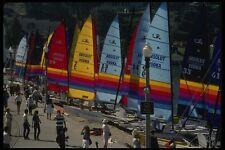082023 Hobie catamarans PARCO ACQUATICO A4 FOTO STAMPA