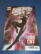 Black Cat #12 1st Iron Cat Cover Variant NM- Beauty Wow