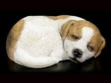 Gartenfigur - Jack Russel Welpe schlafend - Hundewelpe Hündchen Gartendeko
