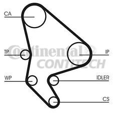 ContiTech CT987K2 Timing Belt Kit FOR CITROEN FIAT PEUGEOT