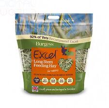 Excel Burgess Long Stem Feeding Hay, 1 kg 1kg