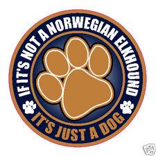 """Not A Norwegian Elkhound Just A Dog 5"""" Sticker"""