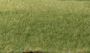 Woodland Scenics FS614 Static Grass, Medium Green 2mm