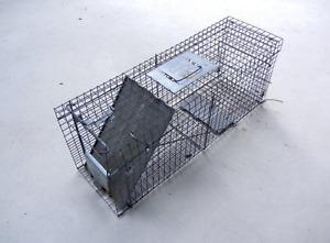 Havaheart - Large 1-Door Professional Live Animal Cage Trap