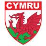 Gales Insignia- Bandera Fresco Autoadhesivo Pegatinas Coche Furgoneta Camión