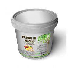 BURRO DI MANGO 500G PURO SENZA CONSERVANTI, PRODOTTO CERTIFICATO, ITALIANO