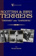 Scottish Terriers And Irish Terriers - Scottie Diehard And Irish Daredevil .